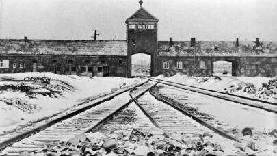 Read More: How the Nazis Tried to Cover Up Auschwitz