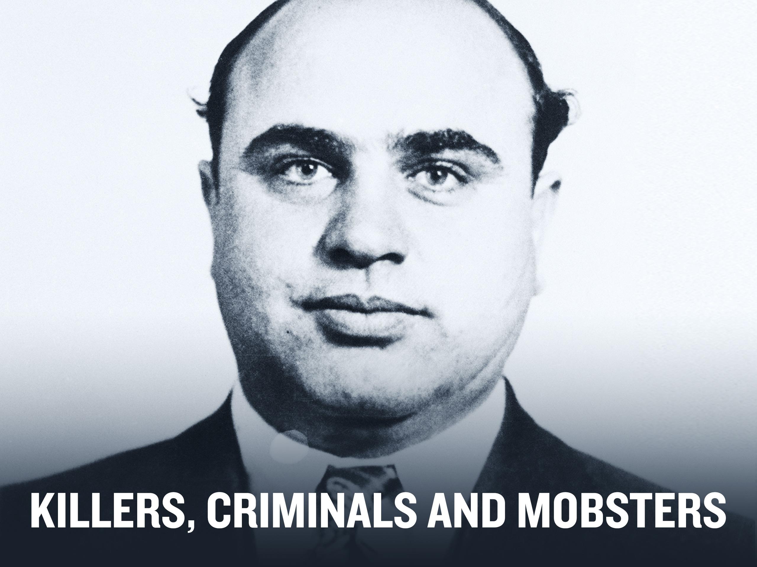 HISTORY Vault: Killers, Mobsters and Criminals