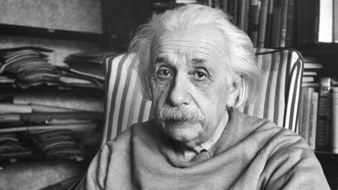 Albert Einstein: Fact or Fiction