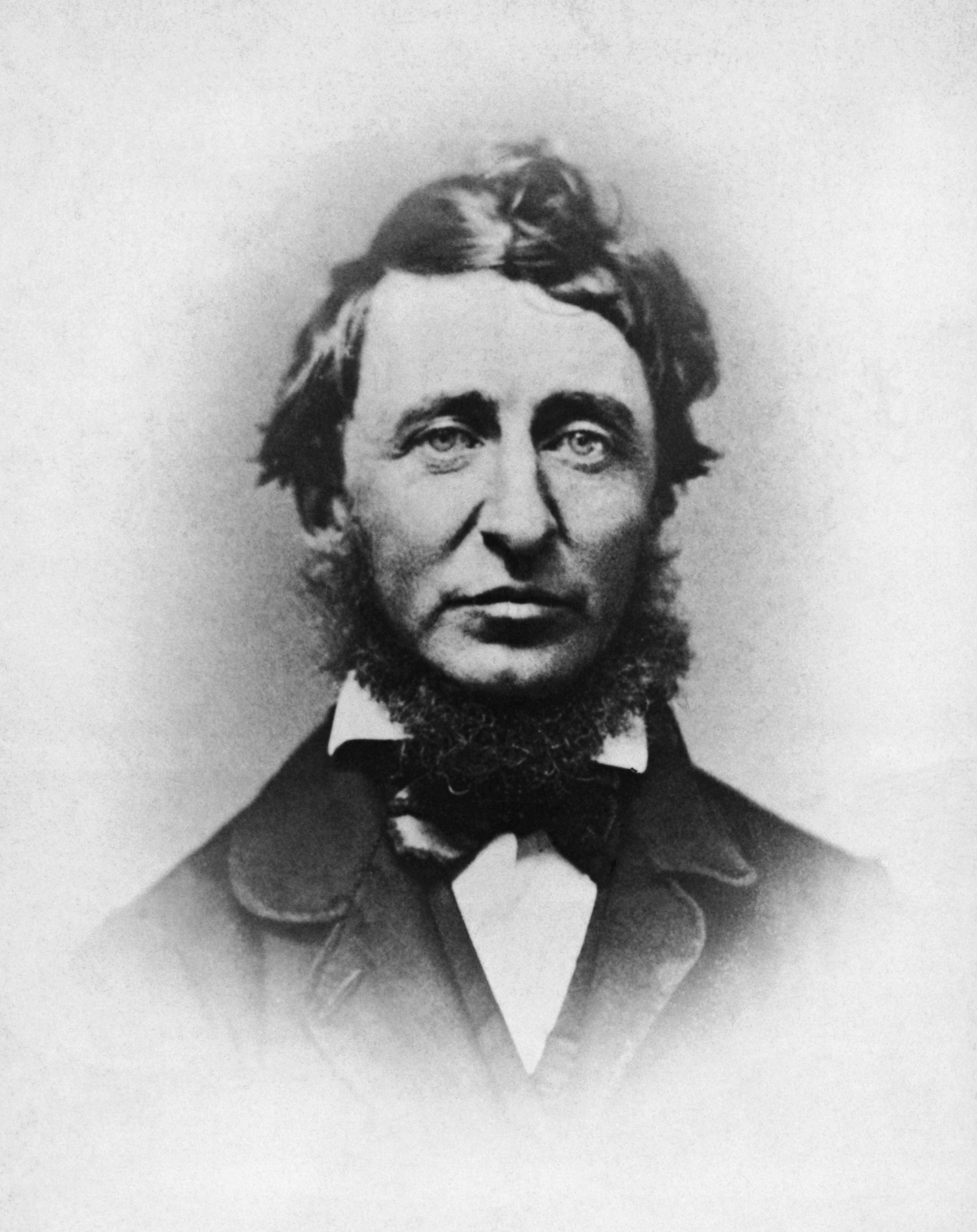Famous Historic Photo HENRY DAVID THOREAU Portrait Black /& White