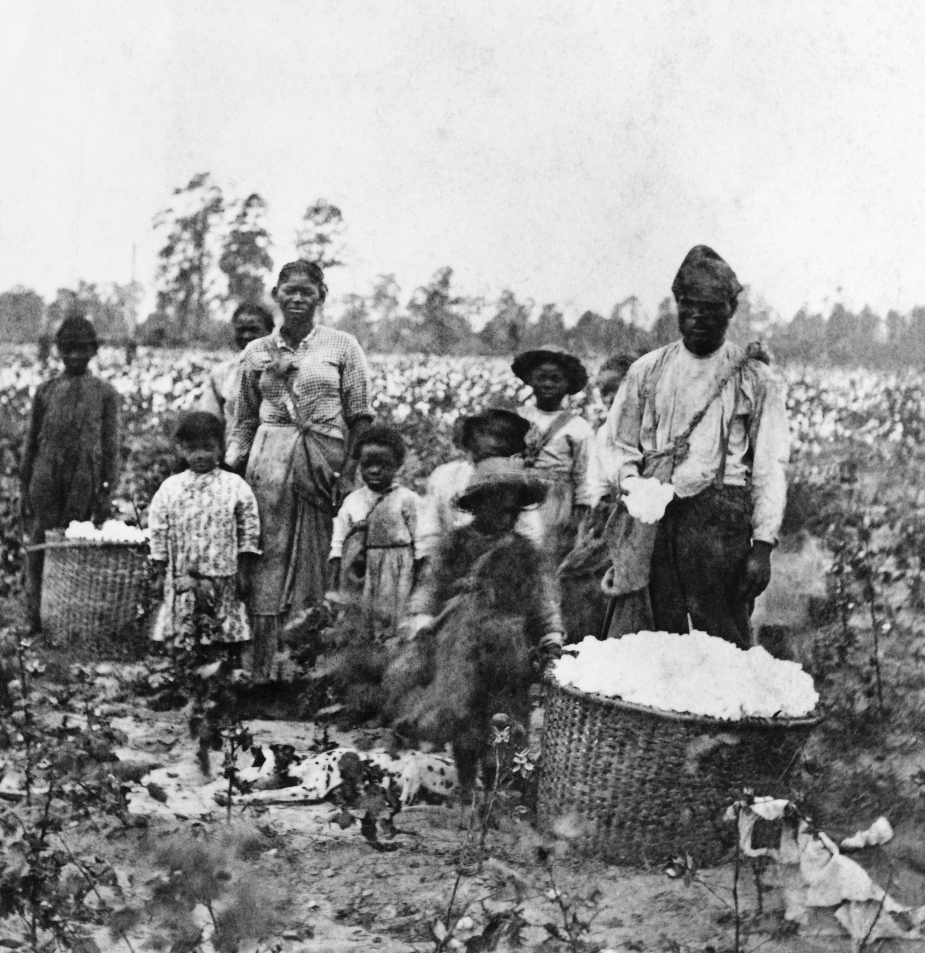 How Slavery Became the Economic Engine of the South - HISTORY