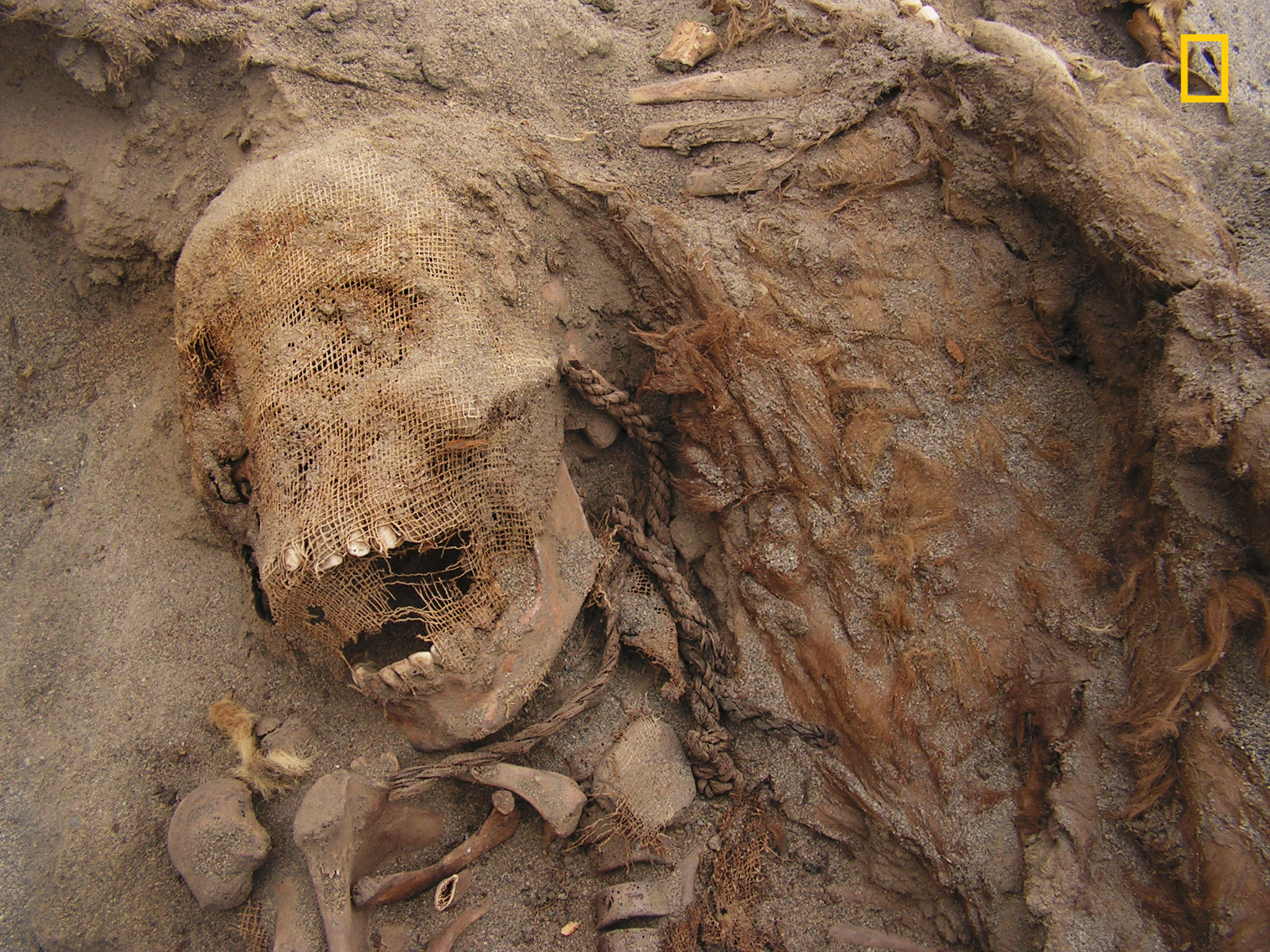 Skeletons of 140 Children Discovered at Archaeological Dig