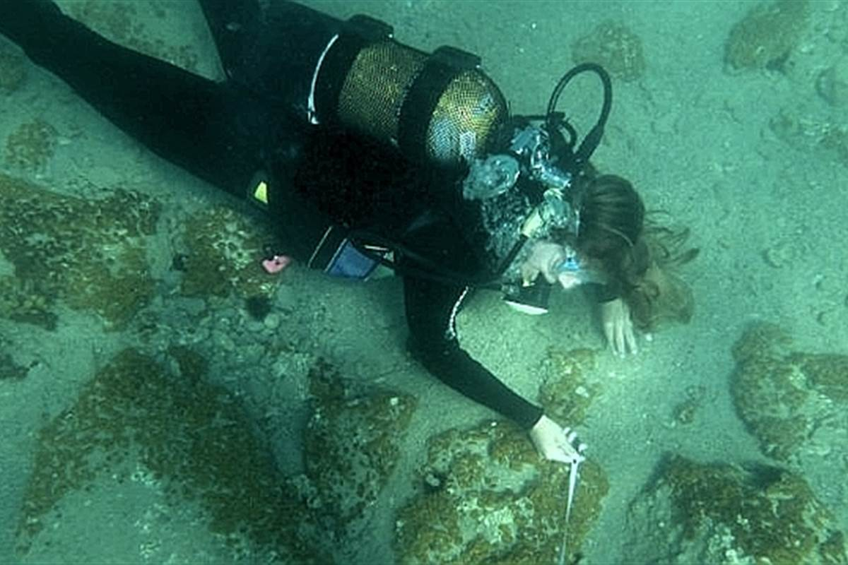 Massive Bronze-Age City Discovered Underwater in Greece