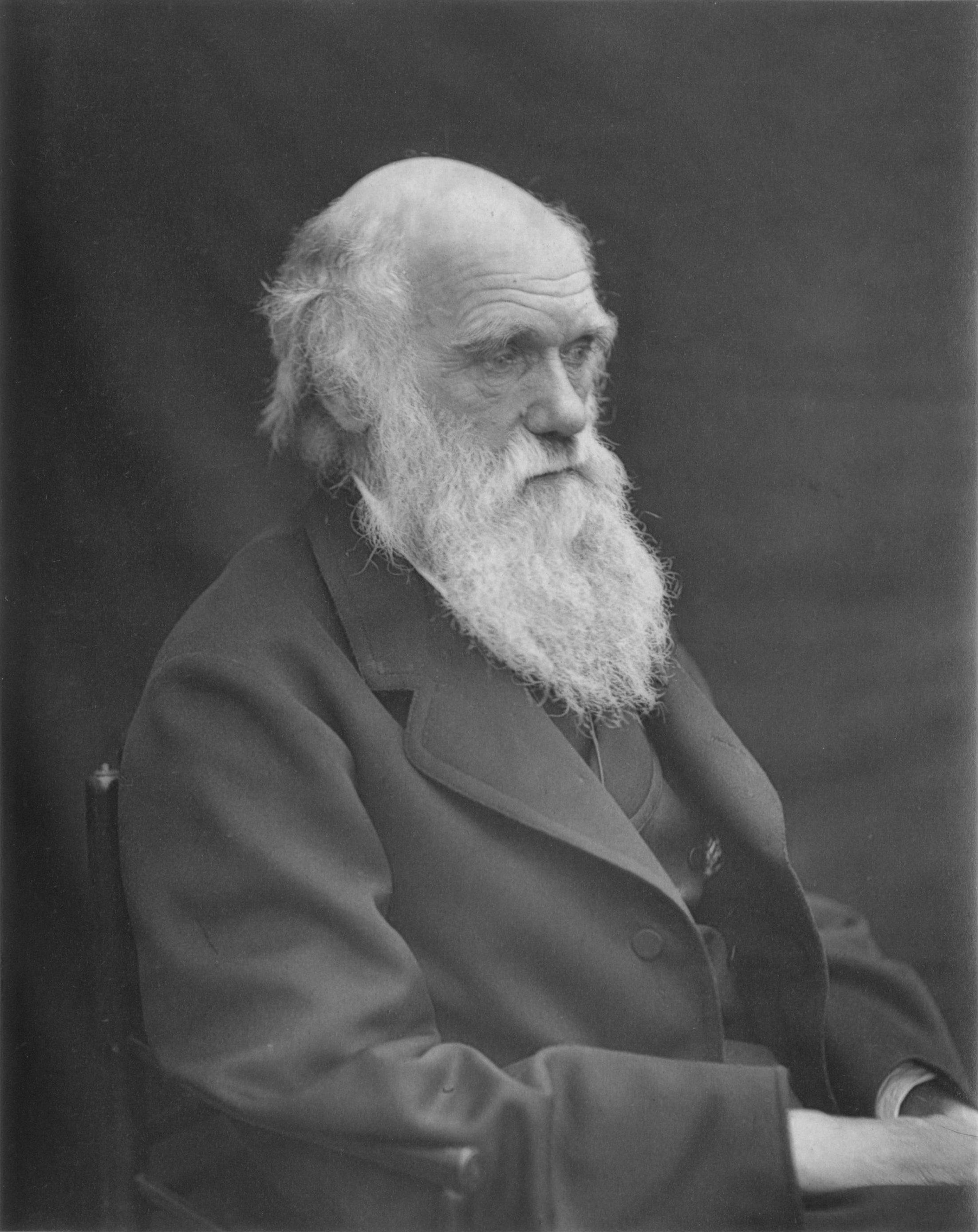 What Killed Charles Darwin?