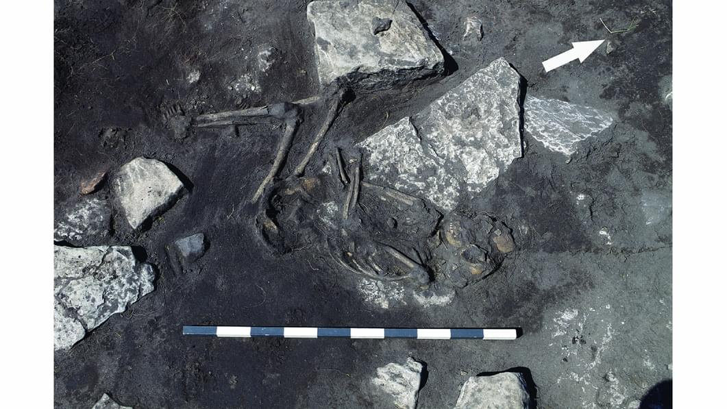 Brutal Pre-Viking Massacre Uncovered in Sweden