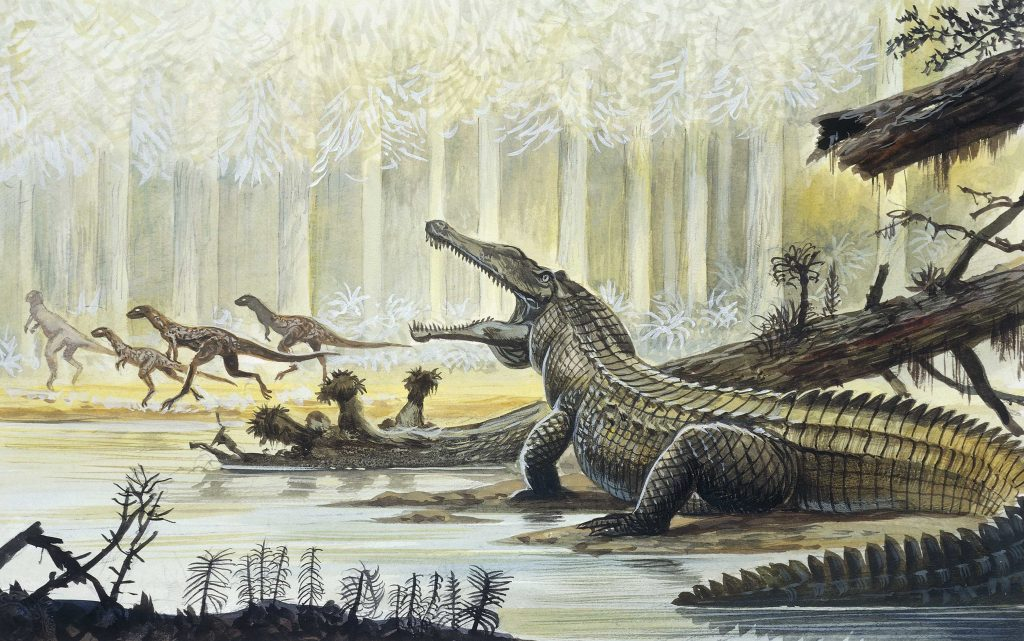 Triassic Dinosaurs
