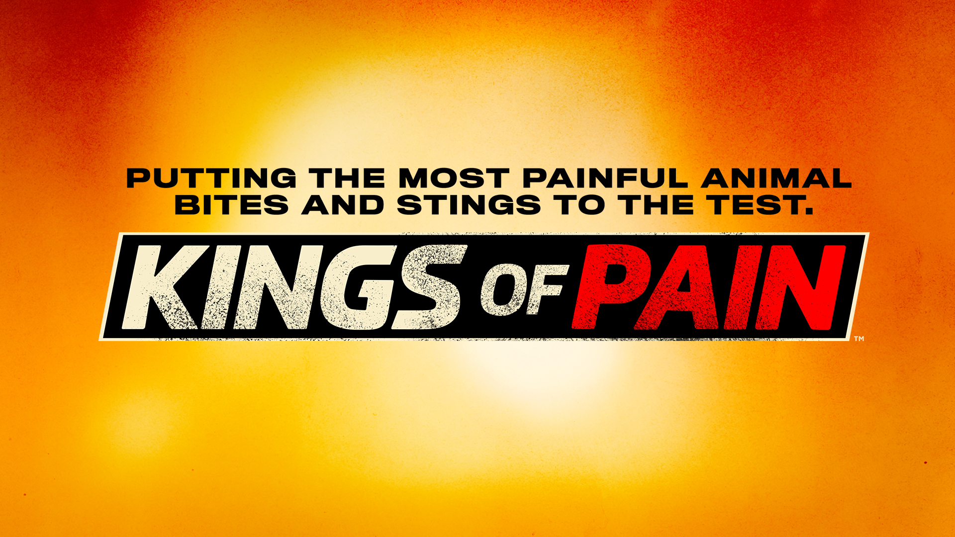 Kings Of Pain Full Episodes Video More History