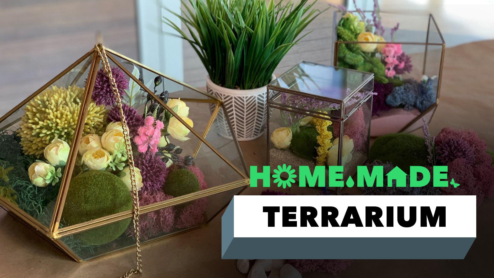 DIY Colorful Terrariums Decor