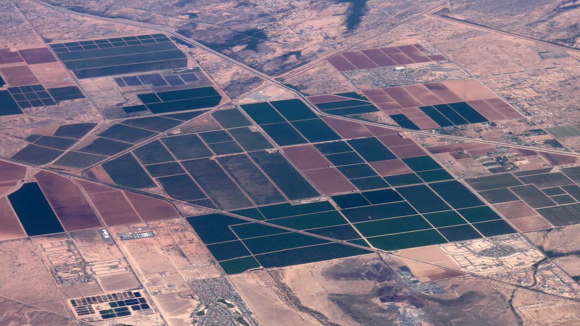 An alien's-eye view of an irrigated farm in the Arizona desert.