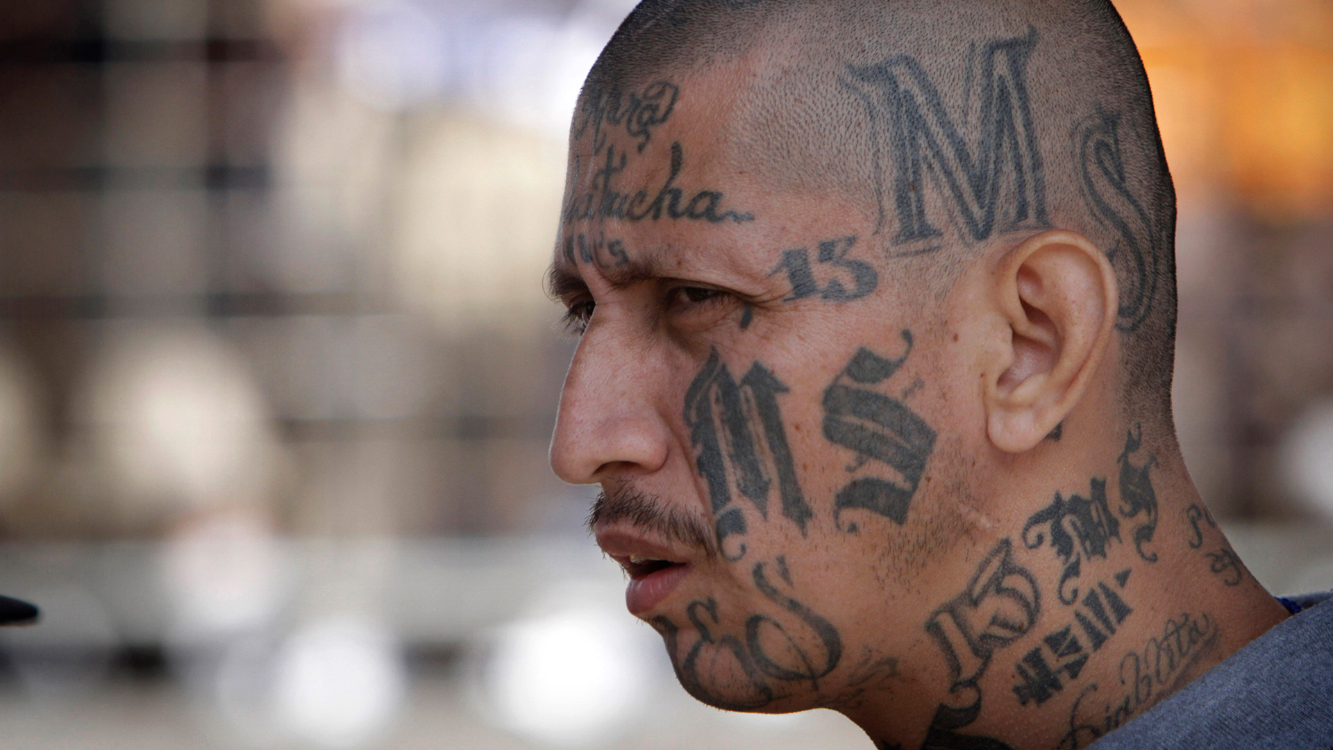 The MS-13 Gang: Destroying a New York Village's Sense of Community