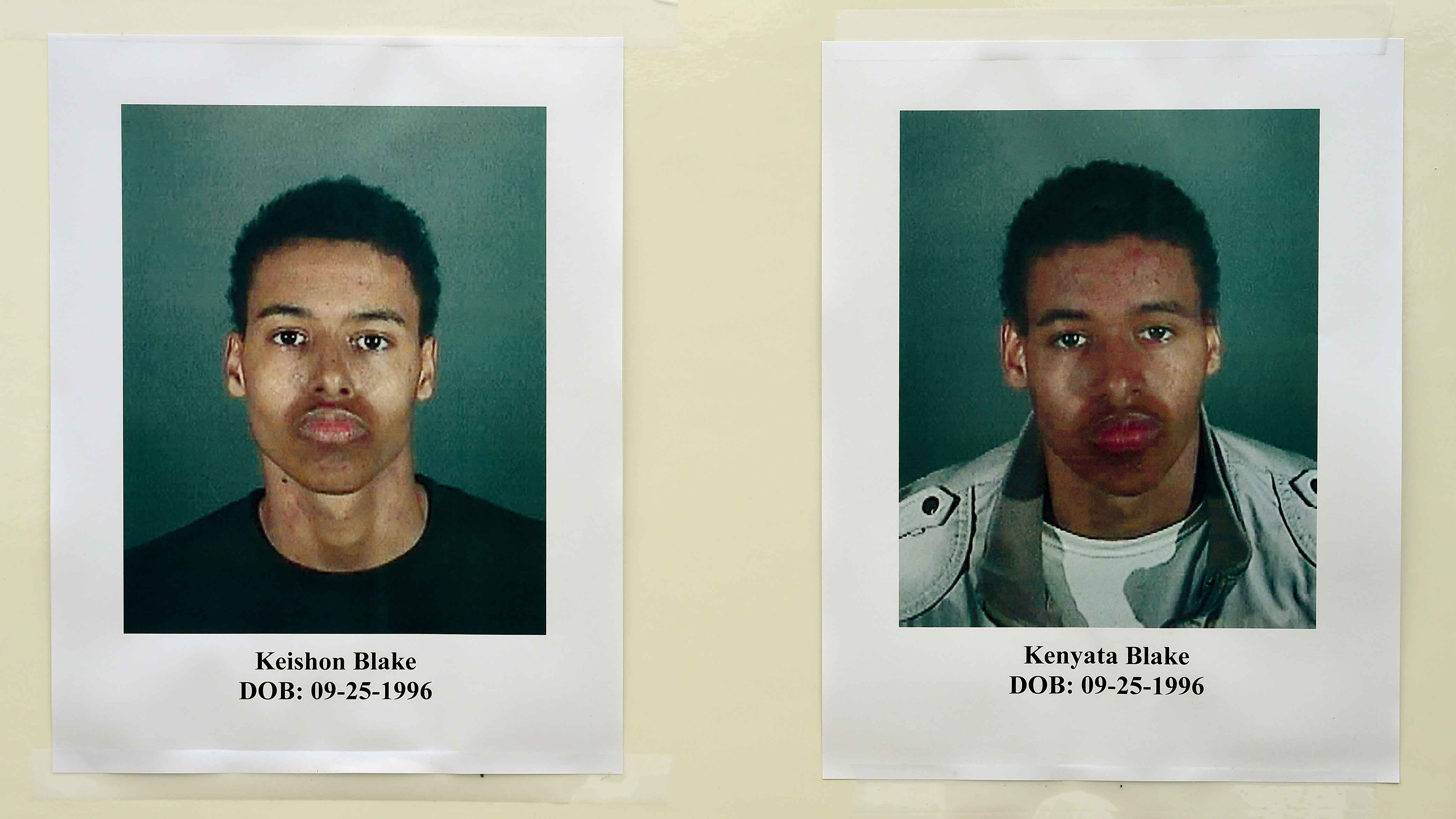 Double Trouble: Twins Who Have Committed Murders and Other Crimes