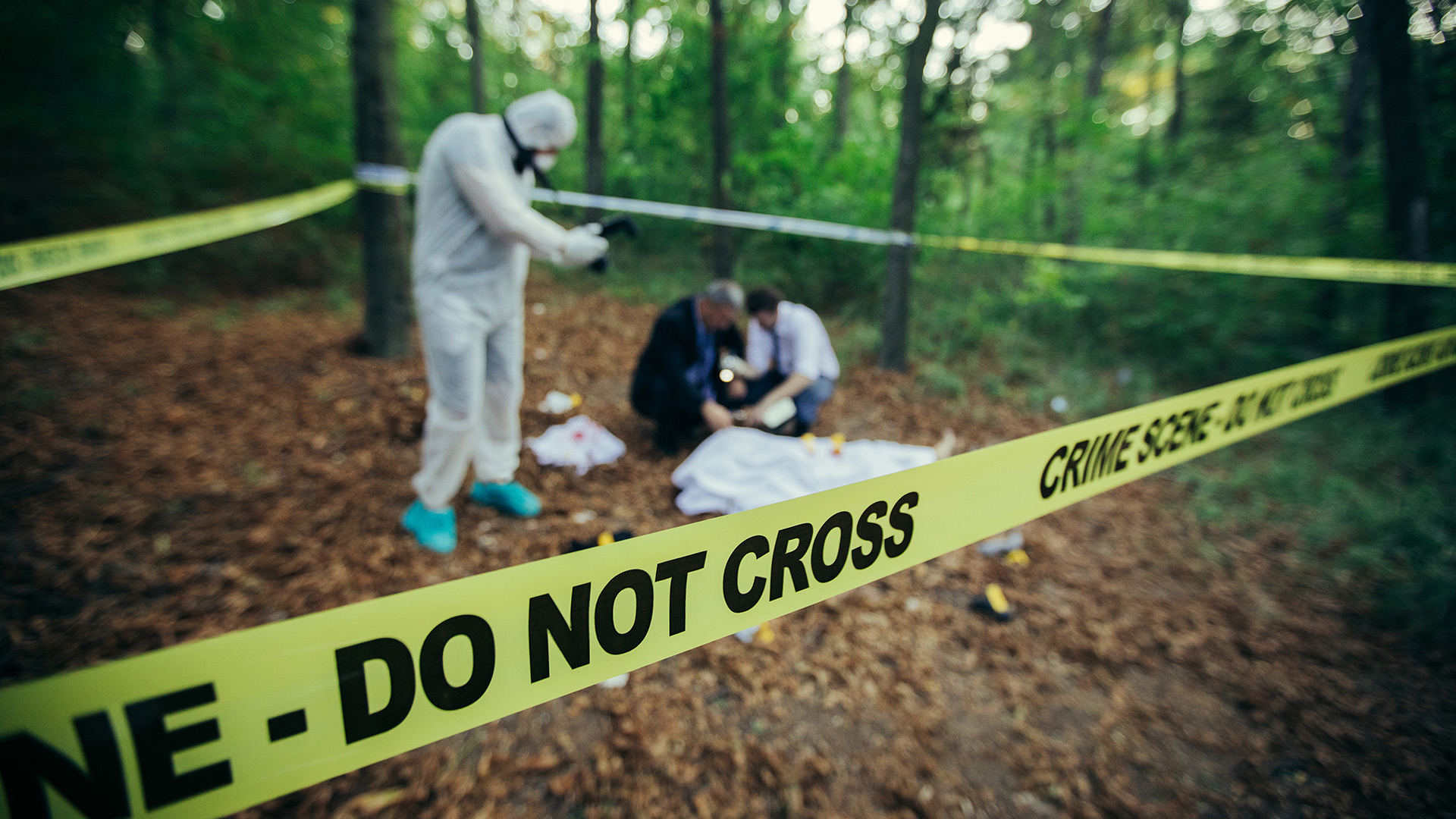 Why It's OK to Leave Dead Bodies in the Woods, and Other Strategies for Not Messing Up A Crime Scene