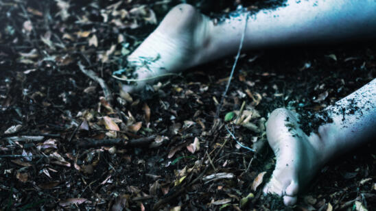 6 Body Farm Experiments That Could Help Solve Crimes