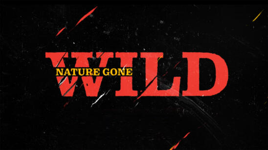 A&E Announces New Series 'Nature Gone Wild'