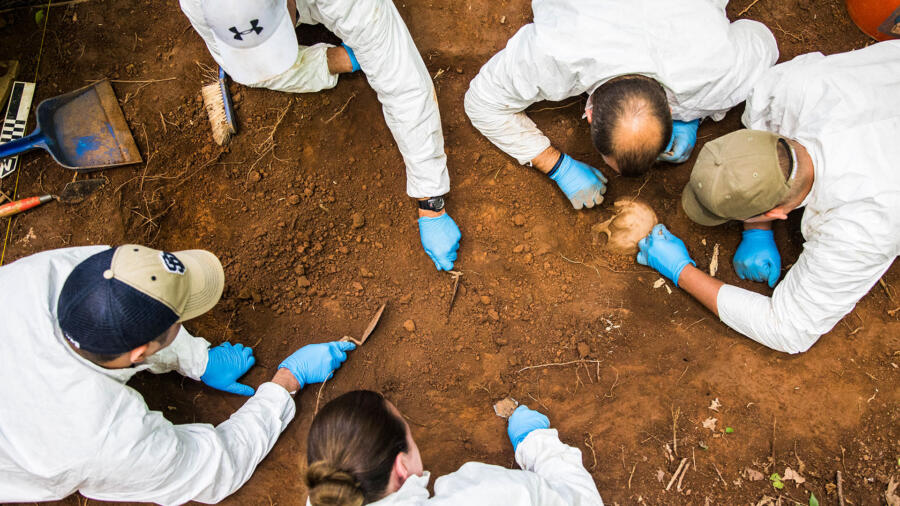 The University of Tennessee's Body Farm