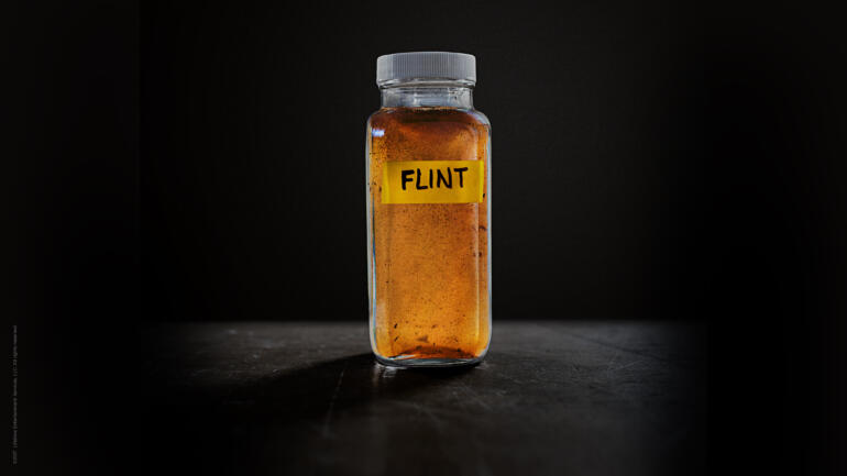 Flint - Lifetime