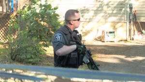 Gun Shots Heard