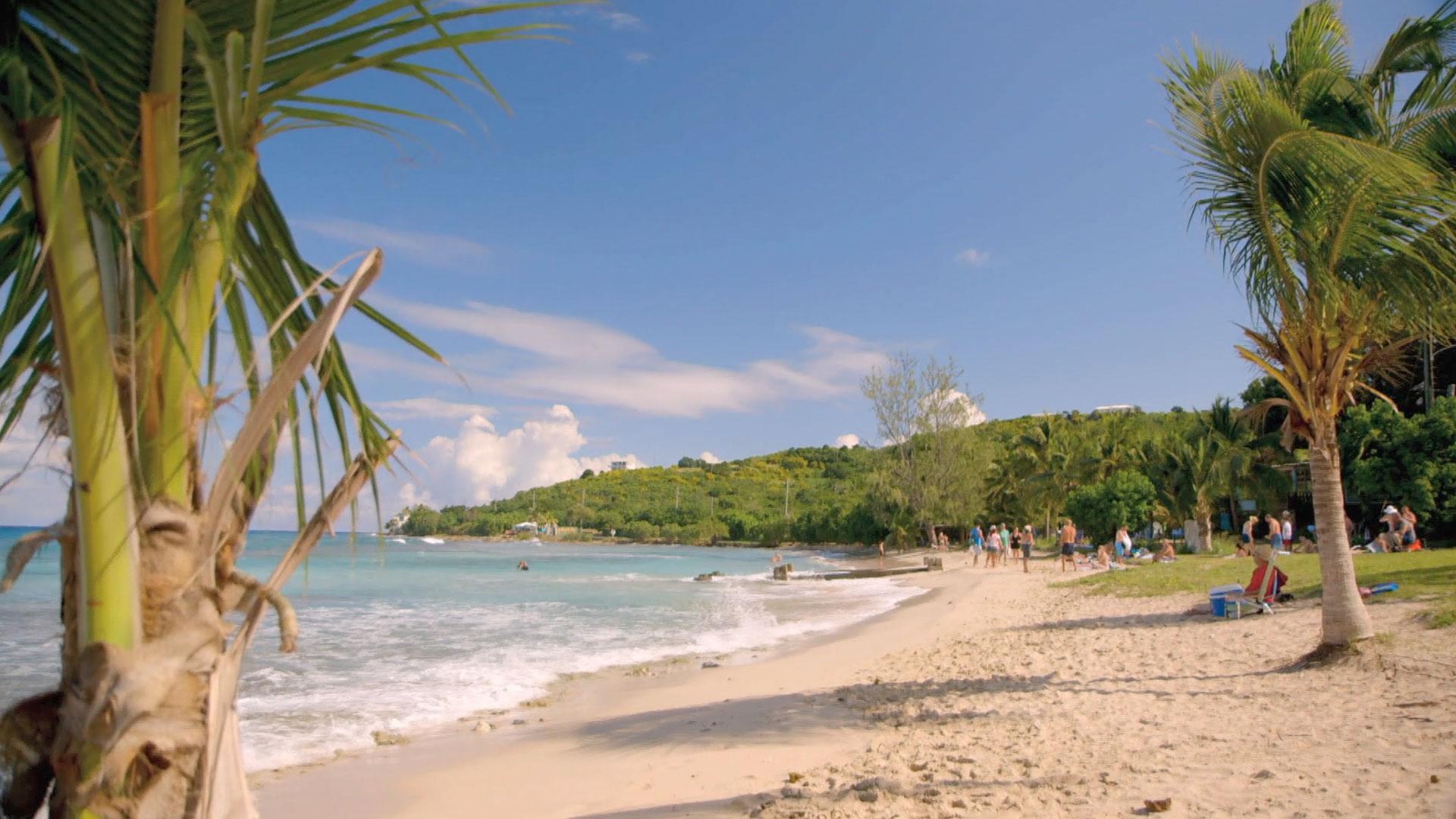 Castaway in Cane Bay