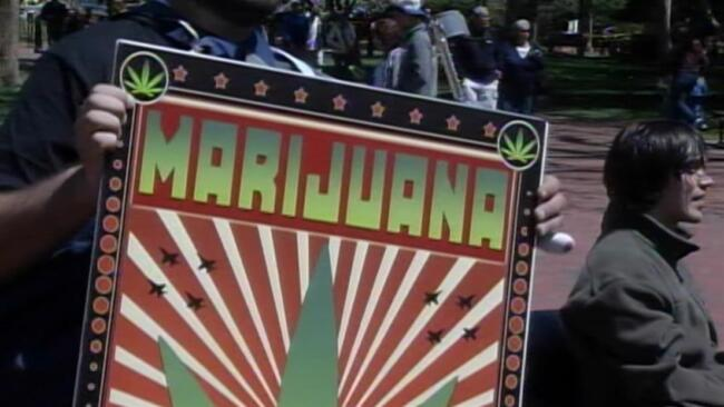 The Marijuana Revolution