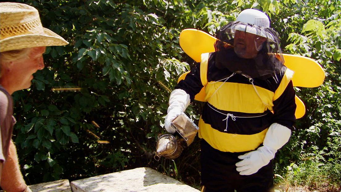 Larry vs. the Killer Bees