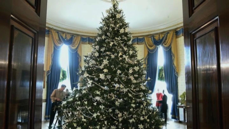 Christmas Trees Around The World 2021