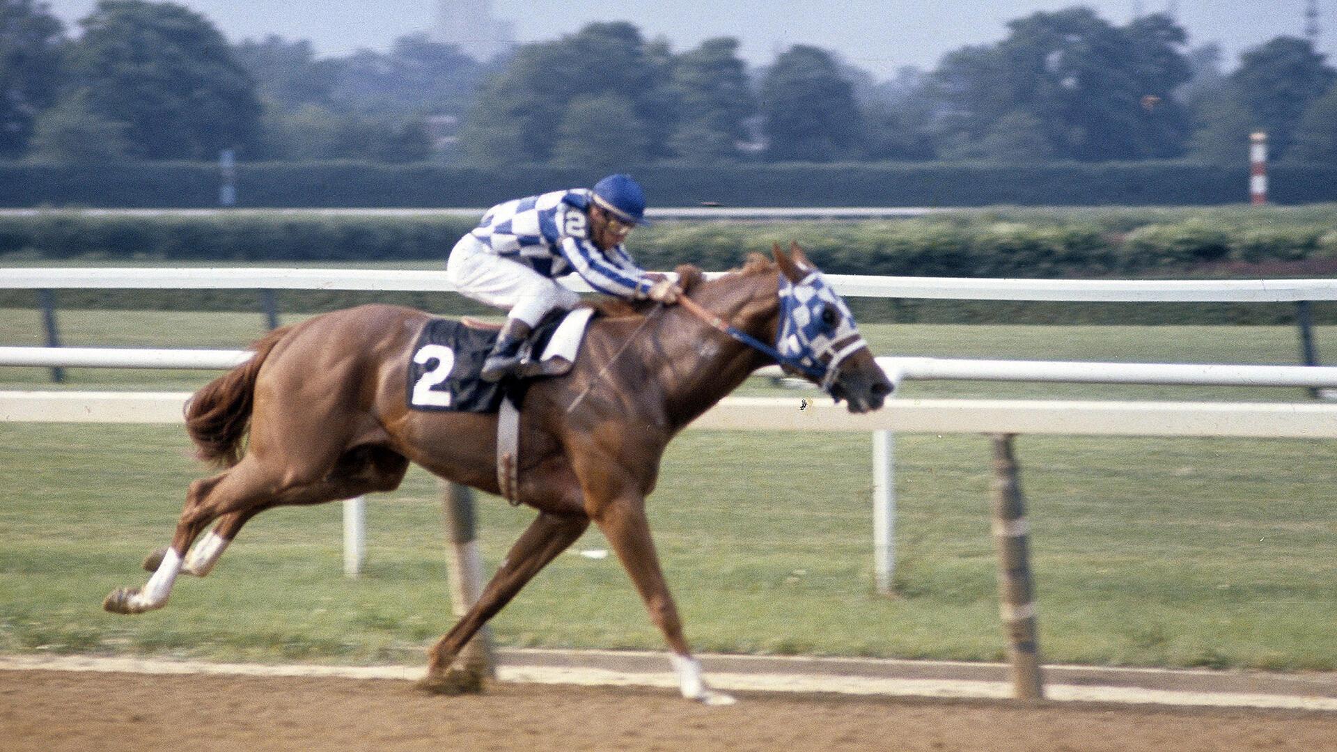 Secretariat Races Records Legend History