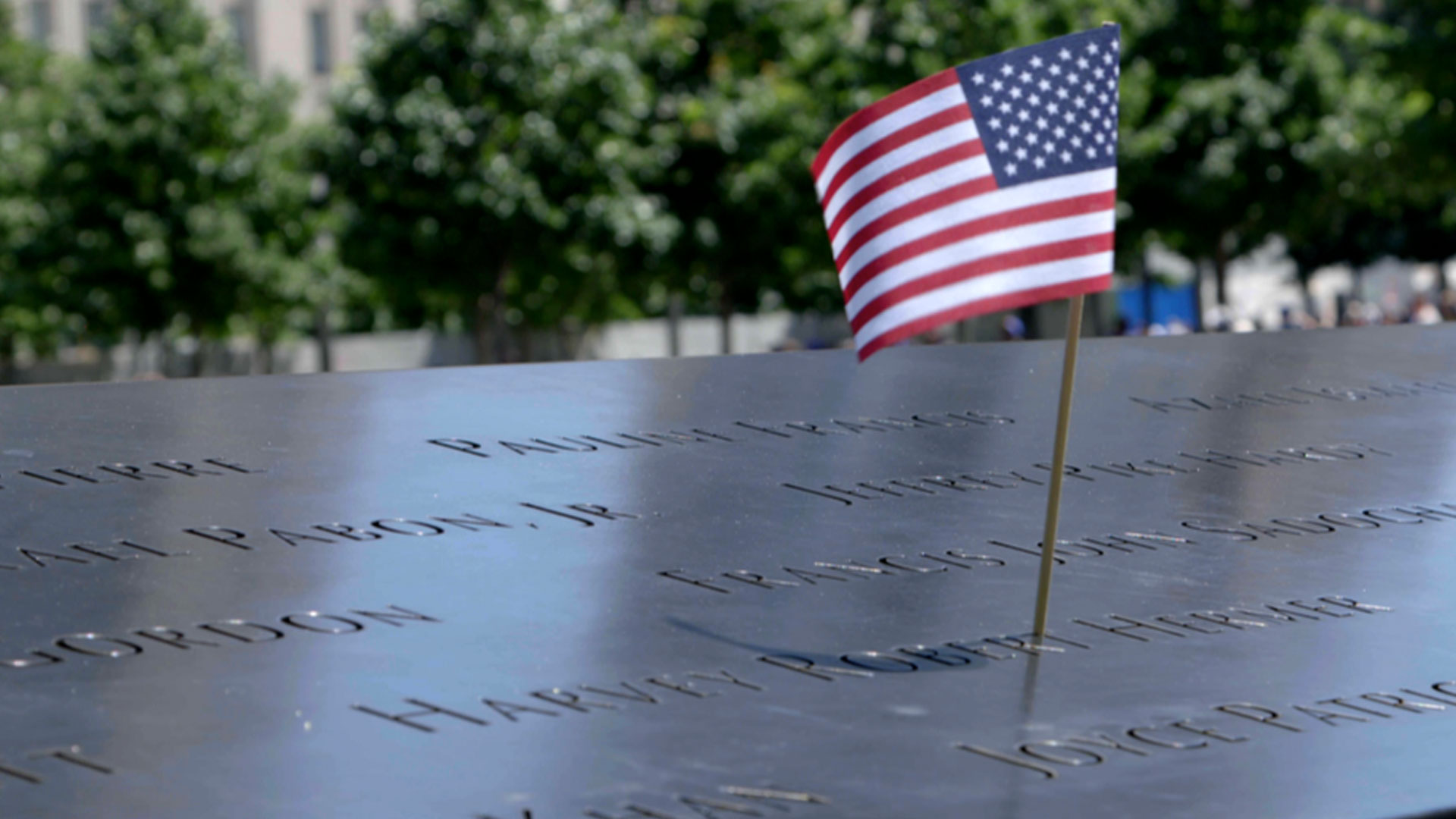 After 9/11: Fifteen Septembers Later