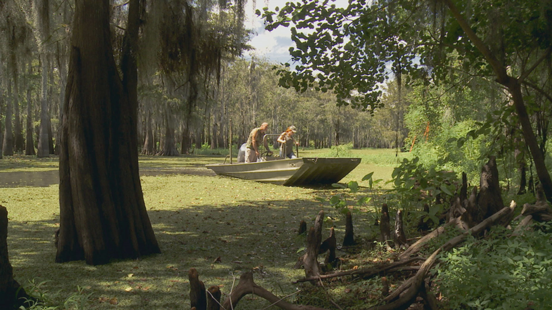 Swamp People : Rolling with the Punches