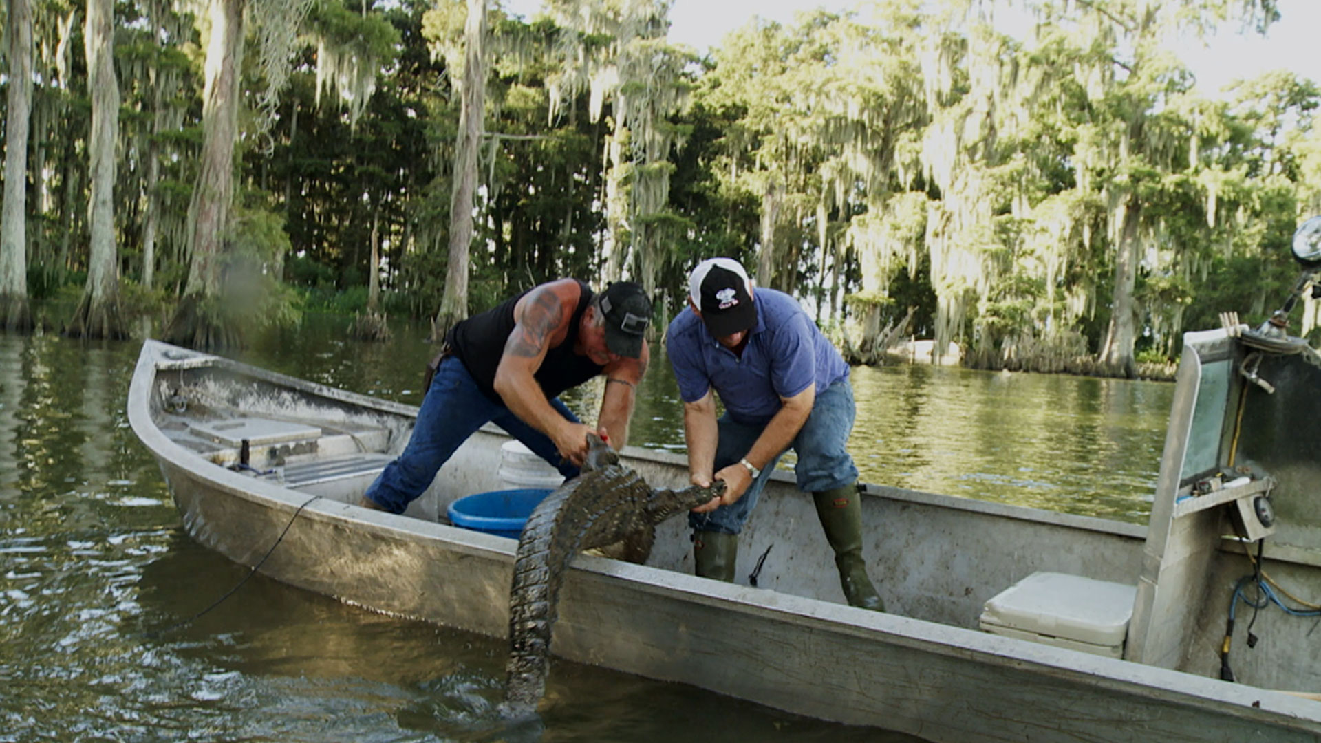 Swamp People : Raising the Stakes